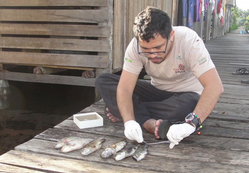 A biologist with the Instituto Peabiru team examines the size of fish caught along the Canaticu River. Photo courtesy of Patricia Schneider.