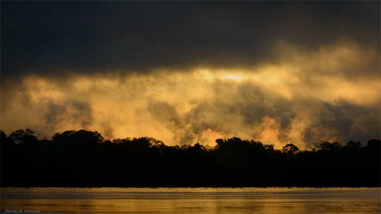 The Amazon rainforest generates about half of its own water supply. A new study argues that basin-wide data, research and policy are needed to effectively protect Amazonian freshwater ecosystems. Photo © Charles Peterson on Flickr under a Creative Commons Attribution-NonCommercial 2.0 Generic license