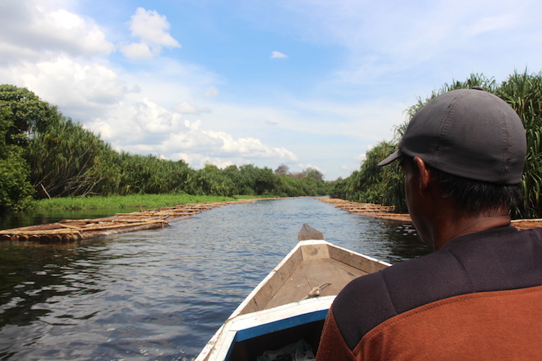 Illegally harvested logs float down both sides of a river early in the BOSF rescue team's journey with three translocated orangutans from Borneo's Mangkutup River to Bagantung forest. Photo by Melati Kaye.