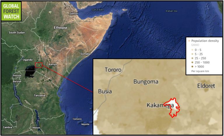 Kakamega Forest lies near Kenya's border with Uganda, in one of the most heavily populated rural areas in the country.
