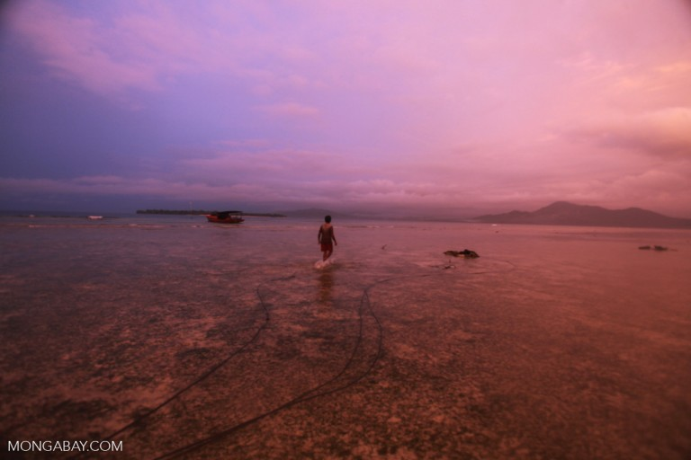 A fisherman at sunset in Sulawesi, Indonesia. Photo by Rhett A. Butler