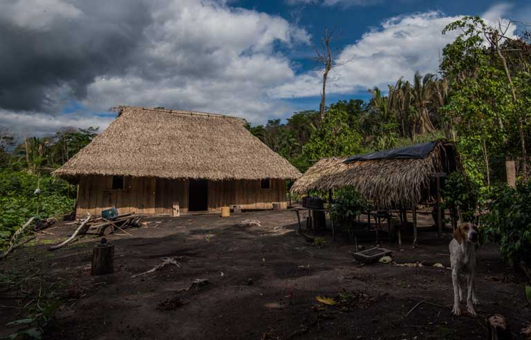 A Typical beiradeiro hut by the Iriri River. Photo by Natalia Guerrero