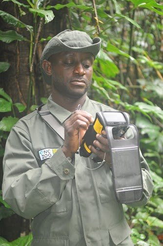 Cross River field worker entering patrol data in the rugged Cybertracker handset. Photo credit: NC Zoo.