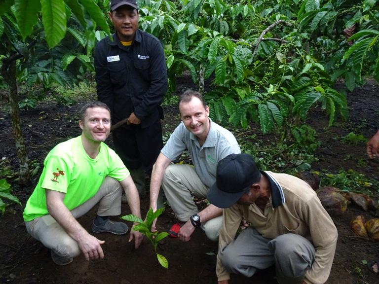 Sizer planting a coffee bush in Indonesia. Courtesy of Rainforest Alliance