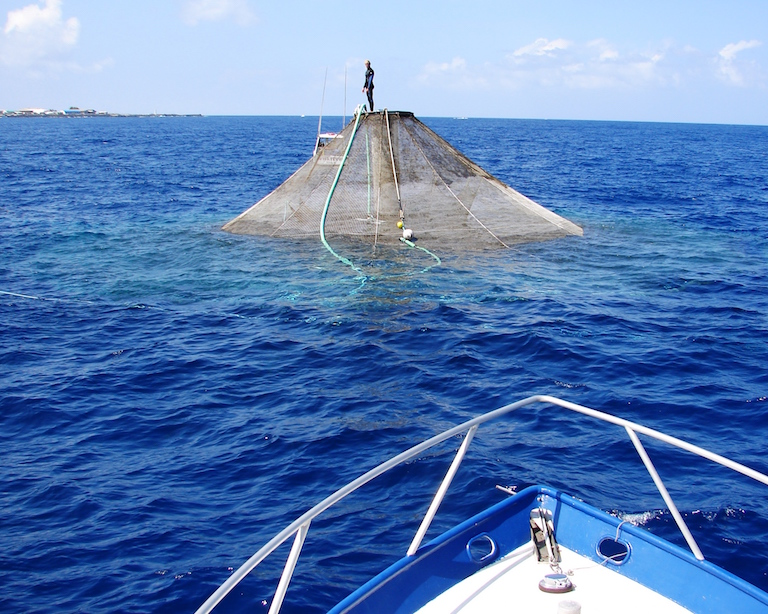 A submersible aquaculture cage sits at the surface for cleaning and inspection. Photo by NOAA Fisheries.