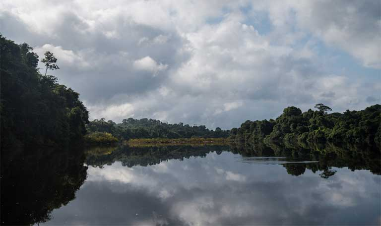 The Iriri River in the Amazon basin, site of the town of Maribel, and of the sustainable family-run Brazil nut mini-factory and the unsustainable ghost ranch of Julio Vito Pentagna Guimarāes. Photo by Mauricio Torres.
