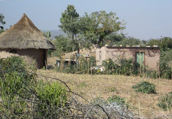 An ordinary homestead in Mukada village near the Marange diamond fields. Photo by CRD.