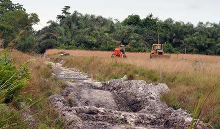 Bulldozers work to clear a tract of savanna in Gabon. Careful selection of the areas to be developed for agriculture can reduce overall harm to ecosystems. Photo by Rhett A. Butler