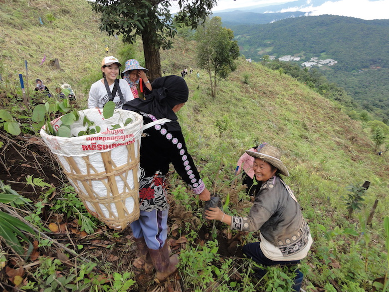 A woman distributes trees from her basket to restore a steep forest in Thailand's Chiang Mai Province in 2011. Photo by S. Elliott.