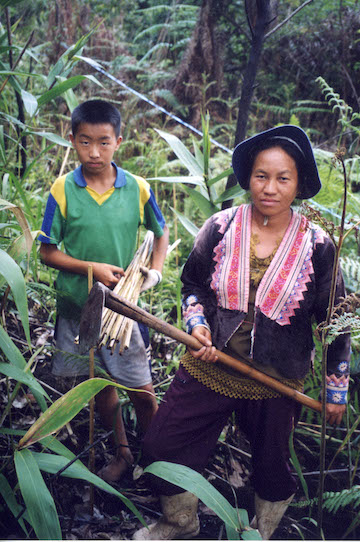 People still use ancient tools to plant trees in most reforestation projects. Here Hmong hill tribe people restore a forest in Thailand's Chiang Mai Province in 2006. Photo by S. Elliott.