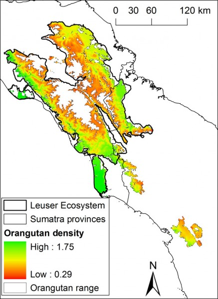 Predicted density of the Sumatran orangutan in the Leuser Ecosystem.
