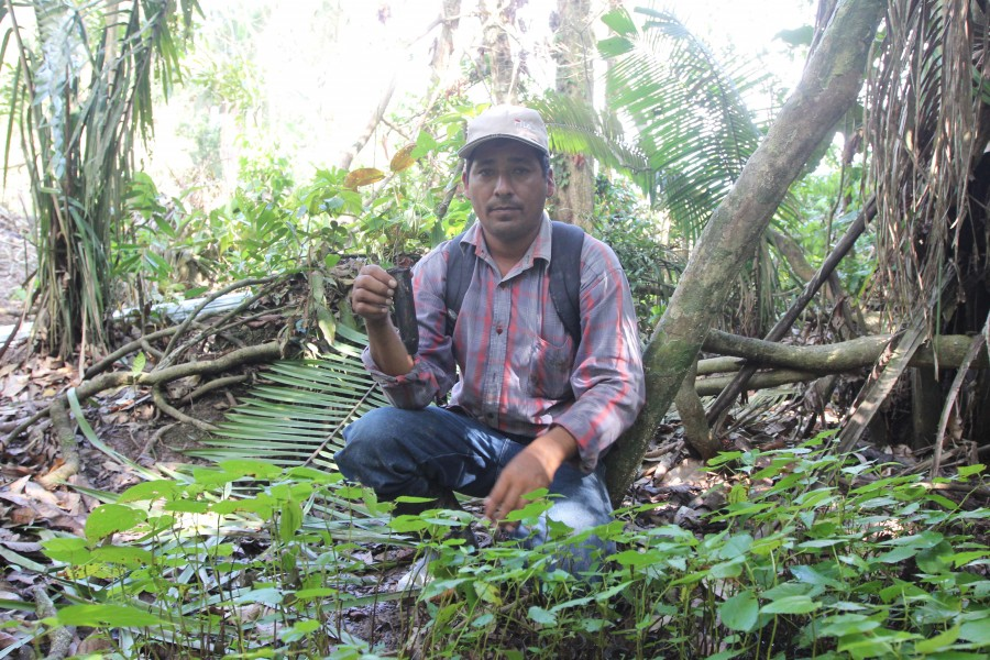 Iván Flores, holding tree seedlings he was going to plant in the forest area that he has lost. Photo by Barbara Fraser.