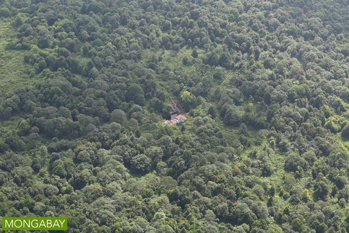 An illegal logging camp in Indonesia. Photo by Rhett A. Butler/Mongabay