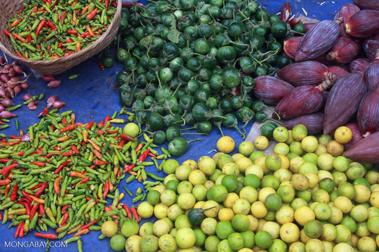 Limes, chilis, and fruit in the Luang Prabang morning market, Province Laos. Photo by Rhett Butler.
