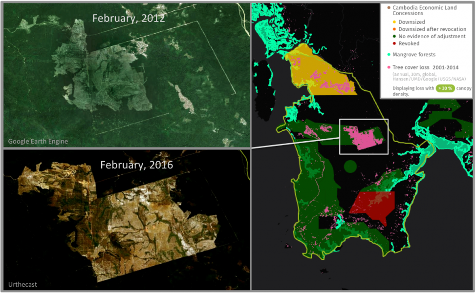 Economic Land Concessions (ELCs) occupy a large portion of Botum Sakor National Park, and many show significant tree cover loss over the past decade. A particularly large area of recent deforestation is sited in a cassava concession in the middle of the park.