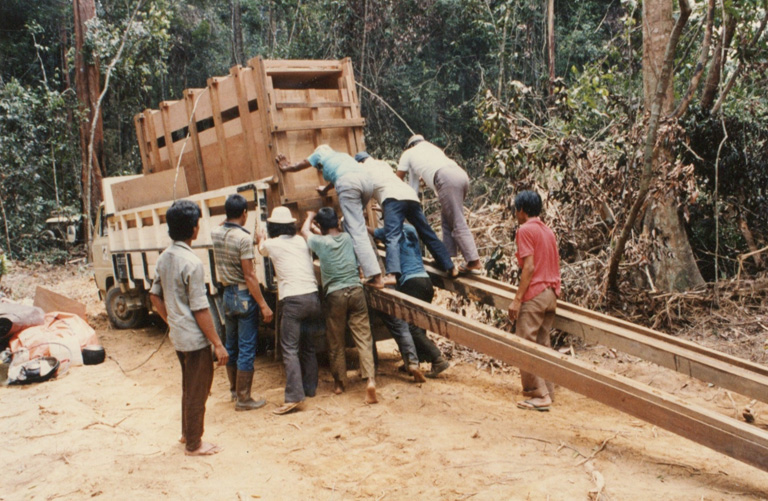 Photos, never published, of the first Sumatran rhino project in 1984. Photo courtesy of Francesco Nardelli