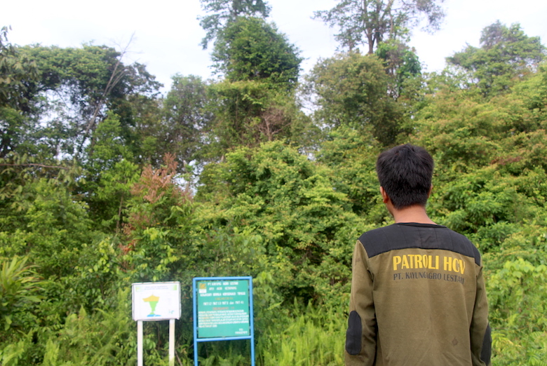 One of PT Kayung Agro Lestari's forest patrol officers stands at the edge of one of the company's high conservation value forests in West Kalimantan.