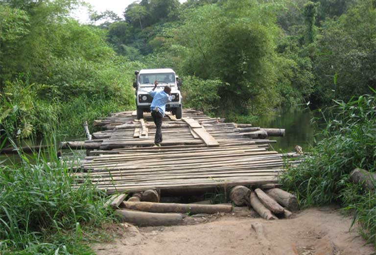 Just getting to the survey site can be a major challenge, as seen here in the Deomcratic Republic of the Congo. Photo courtesy of the A.P.E.S. Database.