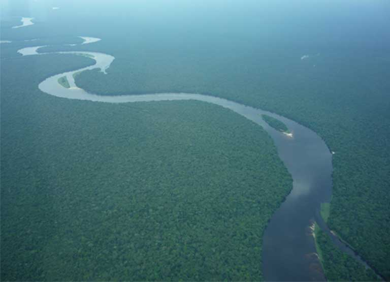 Rainforest in the Democratic Republic of the Congo. The extraordinary ruggedness of tropical terrain makes accurate population surveys difficult. Photo courtesy of A.P.E.S. database