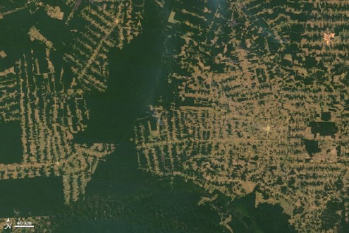 BNDES manages the Amazon Fund, which is raising donations to prevent deforestation like that seen here in the Amazon. Photo courtesy of NASA