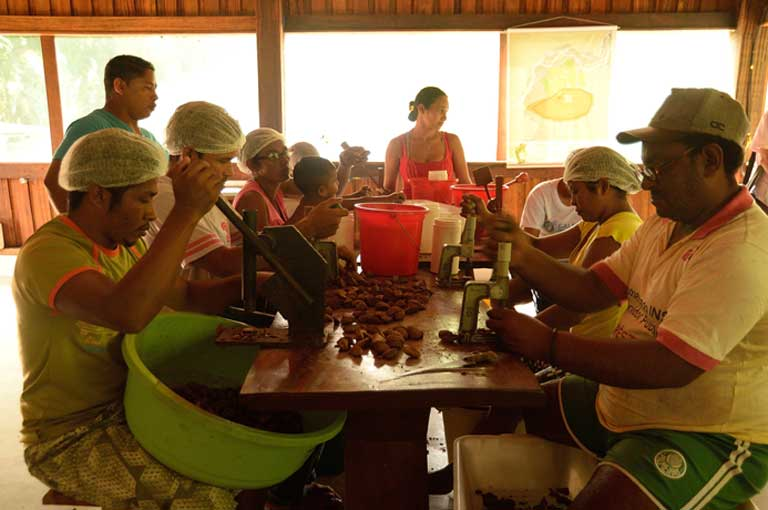 Family workers preparing Brazil nuts at their mini-factory within the Iriri River Extractive Reserve. The BNDES' Social Fund uses non-reimbursable resources to support family farmers and agrarian reform settlers, recyclable-waste pickers, and other small businesses. The Amazon Fund has likewise supported environmentally sustainable, social and production inclusion, earmarking R$296 million (US$81 million) for pirarucu fish farming, rubber tapping, Brazil nuts, organic guaraná, açaí berries, honey, milled cassava flour, and much more. Over 65,000 individuals have benefitted from these sustainable activities. Photo by Natalia Guerrero