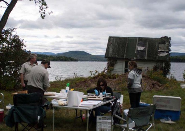 Processing smallmouth bass collected from Lake Umbagog. Photo by Luke Iwanowicz.