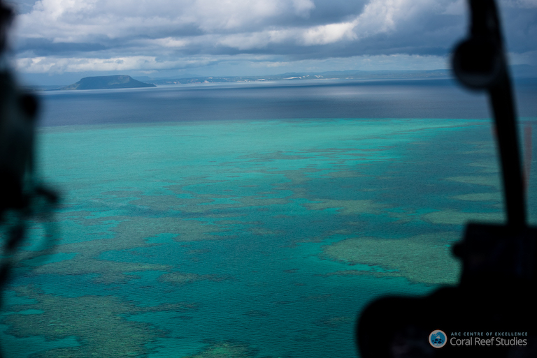 Aerial view of oral bleaching on Australia's Great Barrier Reef. Photo by ARC Centre of Excellence for Coral Reef Studies / Terry Hughes.