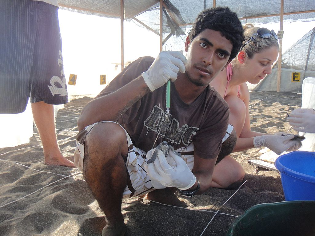 Environmentalist Jairo Mora Sandoval in the hatchery of the Ostional beach Leatherback and Pacific Green Sea Turtle Project, another project he worked for, with fellow volunteers. Photo by Christine Figgener, Wikimedia Commons, CC By-SA 3.0.