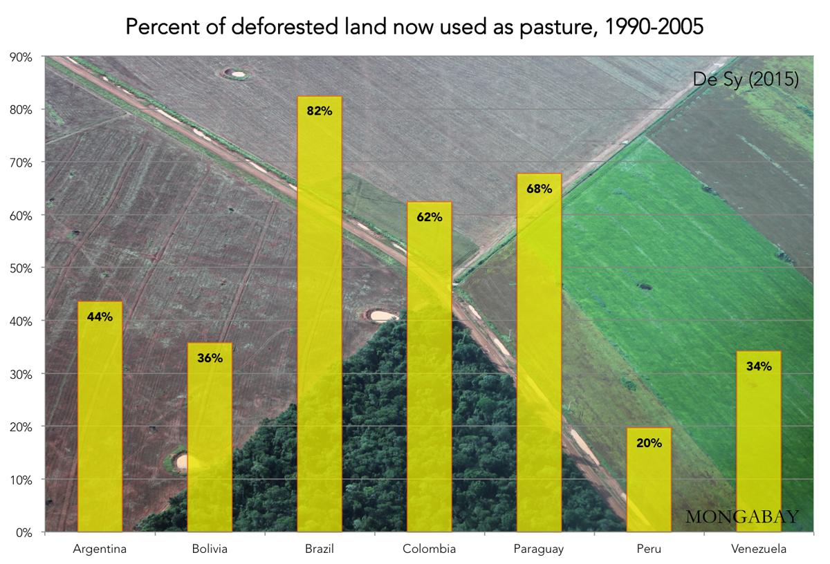 Research paper forest destruction