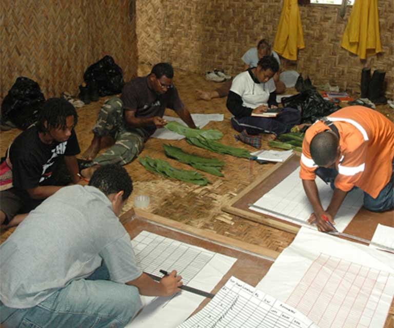 Students work with Dr. Mack in a PNG conservation field course. Photo by Andy Mack