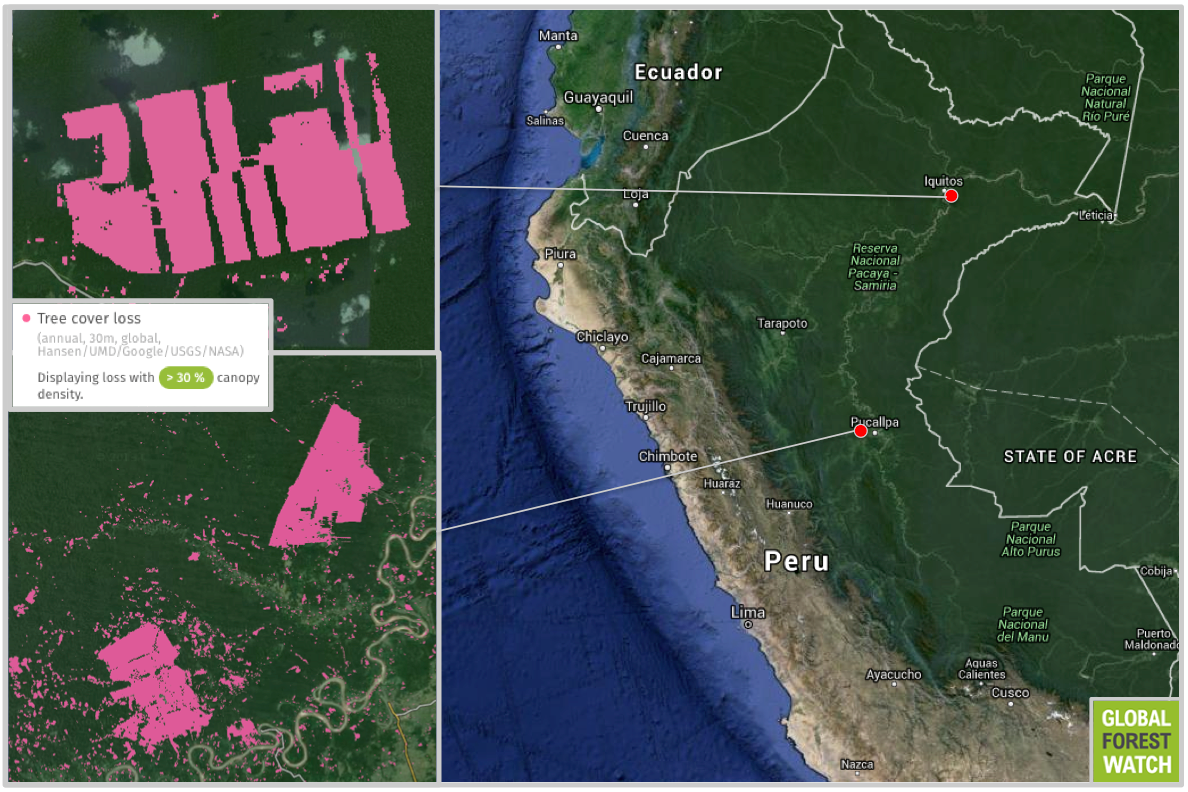 United Cacao's major projects in Peru include a cacao plantation in the north and two palm oil plantations in the midsection of the country. Tree cover loss shown from 2010 through 2014; image courtesy of Global Forest Watch.