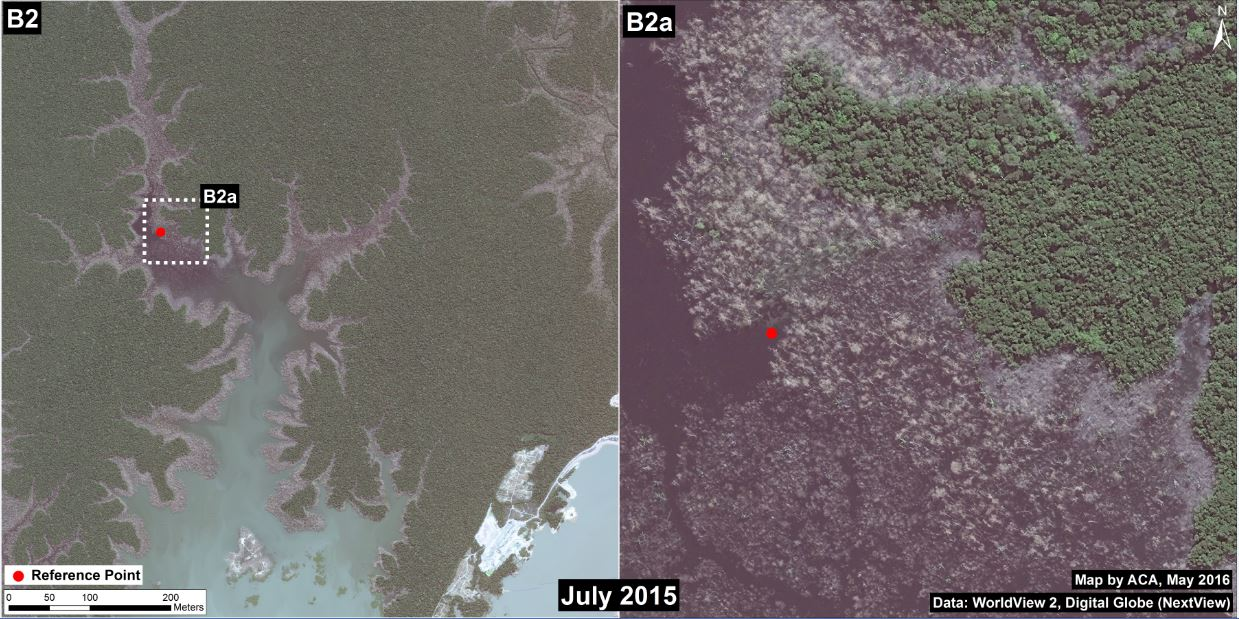 A close-up satellite image shows underwater forest near the Jirau dam. Image courtesy of MAAP.