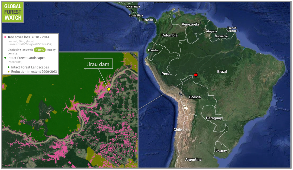 Global Forest Watch shows much of this forest loss cut into Intact Forest Landscapes.