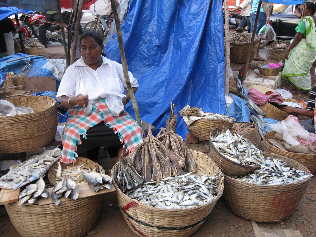 Vendor at Margao Fish Market. Photo by Aaron C, Wikimedia Commons, CC BY-SA 2.0.