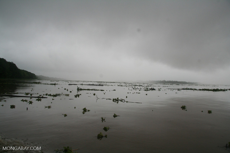 The Amazon River in flood. Photo by Rhett A. Butler/Mongabay