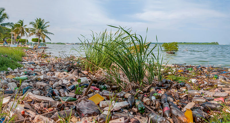 Lake Maracaibo's shore is covered in another form of petrochemical waste: plastic. Photo by The Photographer licensed under the Creative Commons Attribution-Share Alike 3.0 Unported license