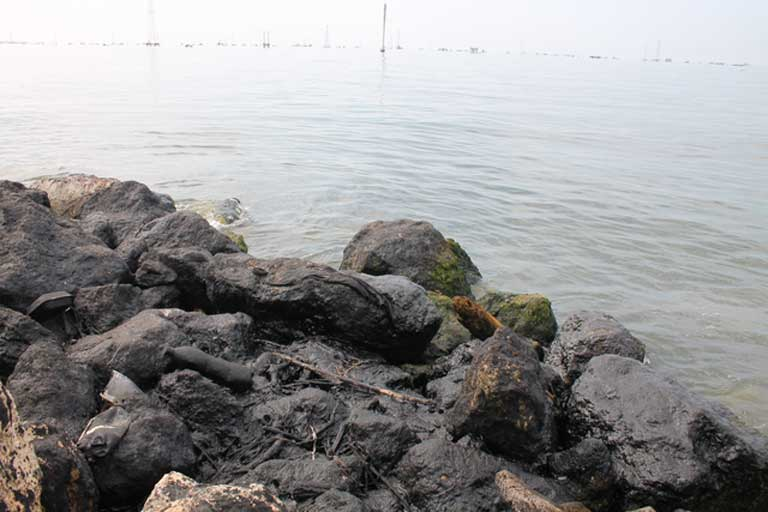 Oil-covered rocks line the shore. Oil wells dot the surface of the estuary. Photo by Jeanfreddy Gutiérrez Torres