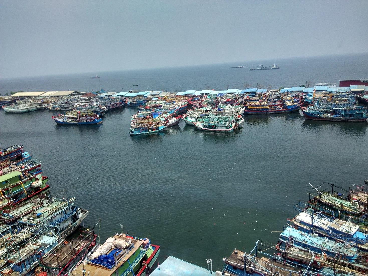 Dozens of grounded boats at Jakarta's Muara Baru port in January. Photo by M Ambari/Mongabay