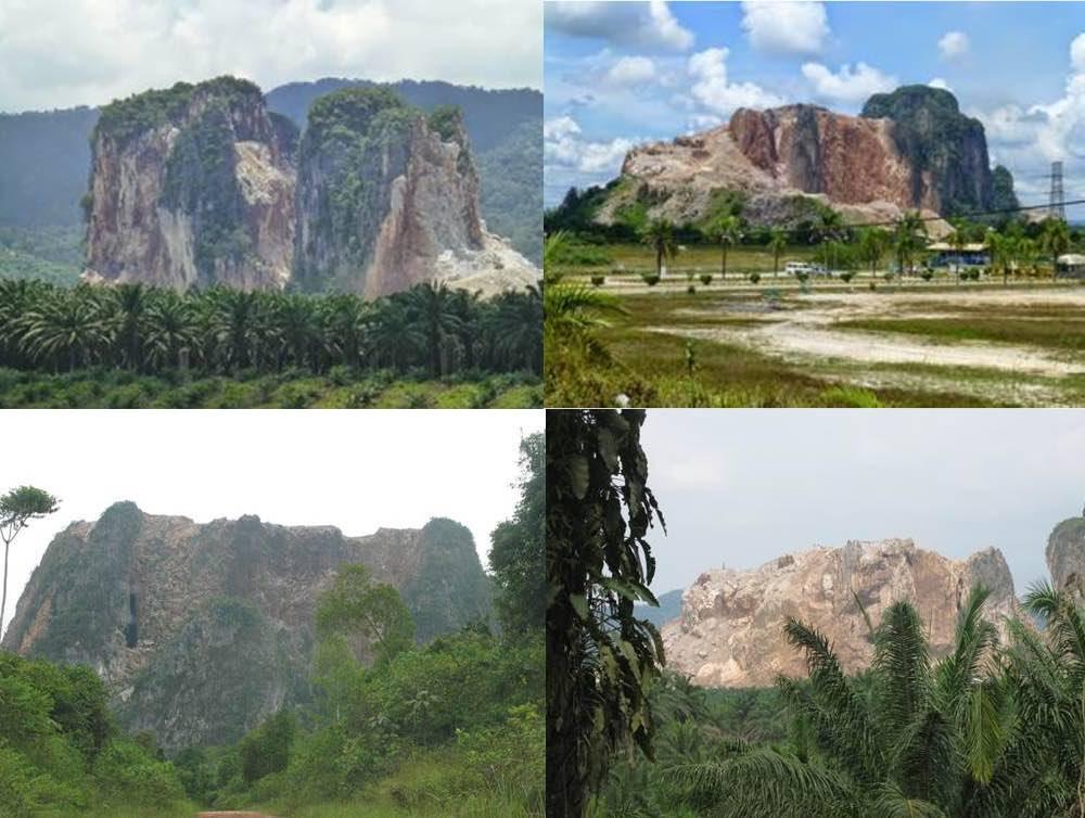 Top row from L to R: Gunung Tenggek and Gunung Sagu in 2014. Bottom row from L to R: Gunung Tenggek and Gunung Sagu in 2016. Photo courtesy of Tom Whitten.