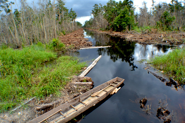 The drainage canal in Talang Petai. Photo by Taufik Wijaya/Mongabay