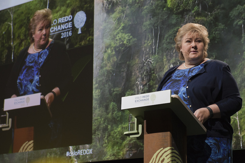 Norway PM Erna Solberg speaks at Oslo REDDX. Photo courtesy of Norad.