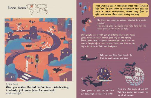 layout-bats