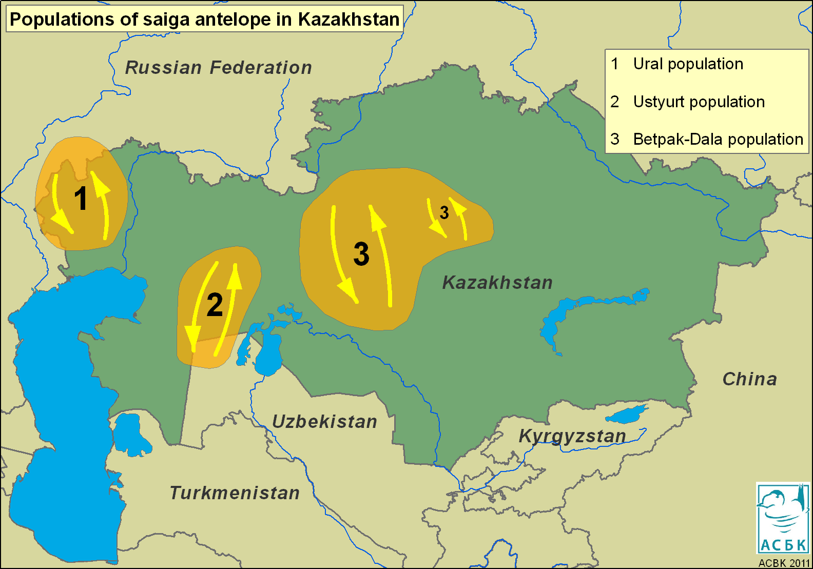 Saiga distribution map. Photo by Steffen Zuther.