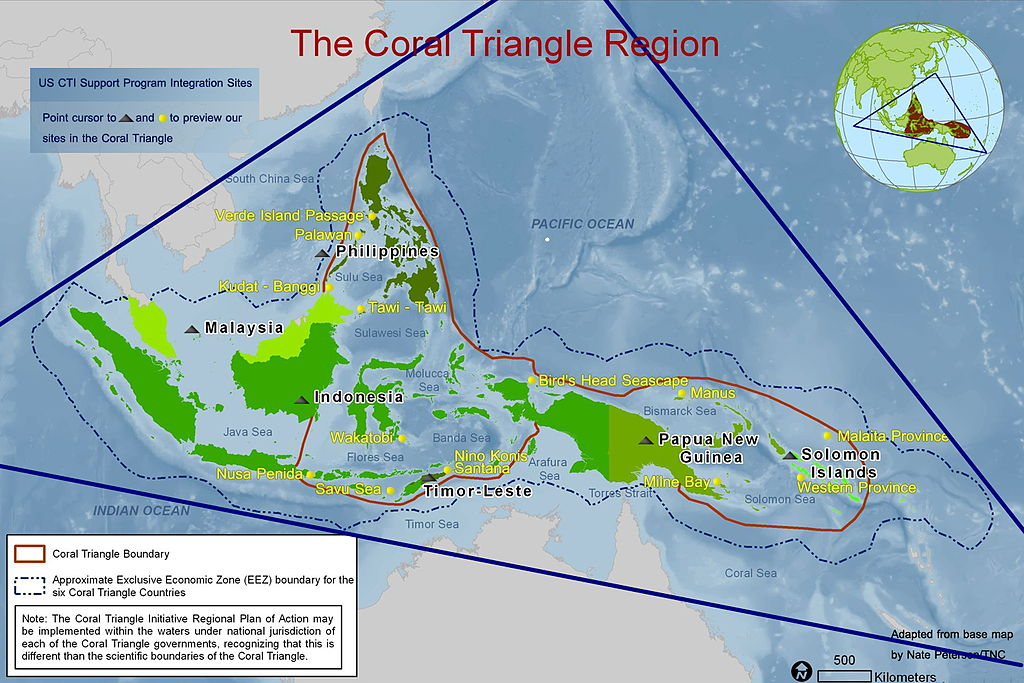 The Tun Mustapha park is located in the Coral Triangle bioregion, an extremely biodiverse, roughly triangular region of tropical marine waters off the coasts of Indonesia, Malaysia, Papua New Guinea, Philippines, Solomon Islands and Timor-Leste. Photo by The Coral Triangle Initiative on Coral Reefs, Fisheries, and Food Security, Public Domain.