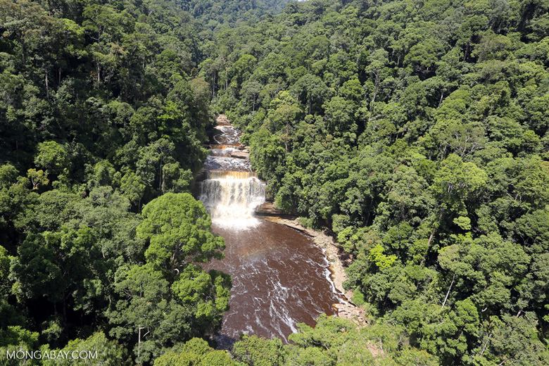 Waterfall in Maliau Basin. Photo by Rhett A. Butler