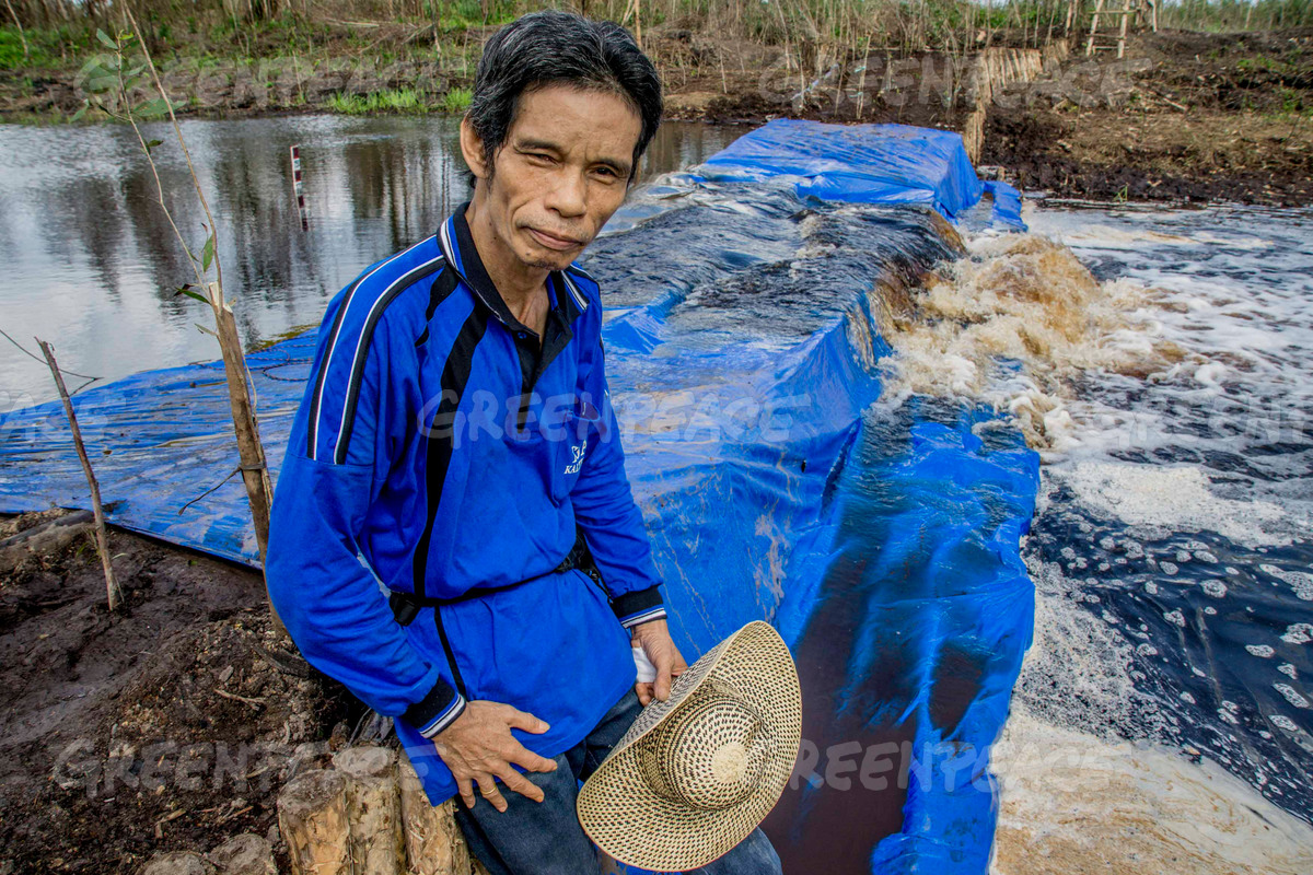 Suwido Limin sits on a dam he helped erect on a drainage canal in a peatland in Central Kalimantan. Photo courtesy of Greenpeace