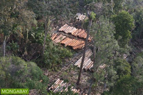 Timber being harvested in Riau Province. Photo by Rhett A Butler