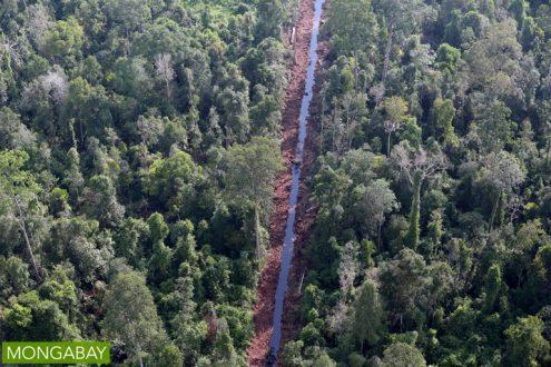 Drainage canal dug through peat swamp in Riau Province. Photo by Rhett A Butler