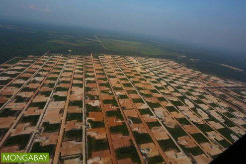 Oil and gas fields in Riau Province. Photo by Rhett A Butler