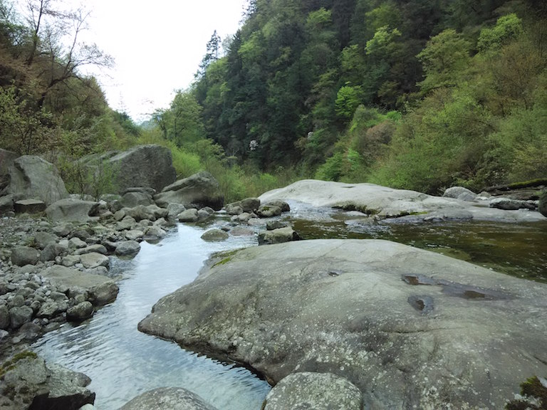 A stream in Laohegou Nature Reserve. Photo by Wang Yan.